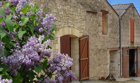 Château Grand <br/>Moulin Macquin <br/>AOC Saint-Emilion