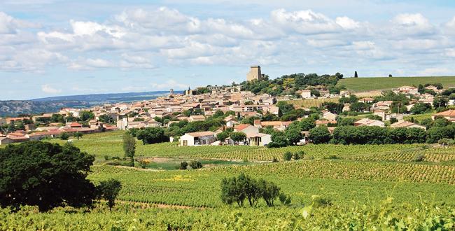 Domaine Chante Cigale<br/>AOP Châteauneuf-du-Pape