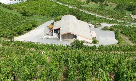 Bouquet de Blanc<br/>Domaine Guy Farge<br/> AOP Vin de Pays d'Ardèche