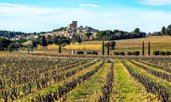 Vieilles Vignes<br/>Domaine Chante Cigale<br/>AOP Châteauneuf-du-Pape